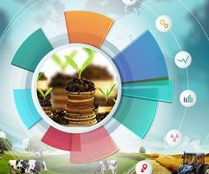Devlet Teşvikleri, Bürokrasi, Mevzuat, Piyasa Şartları Süreç Yönetimi